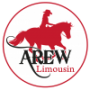 logo-AREW.png